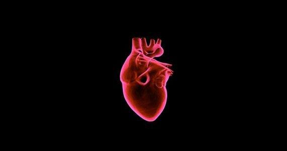 ¿A qué velocidad viaja la sangre en el cuerpo?