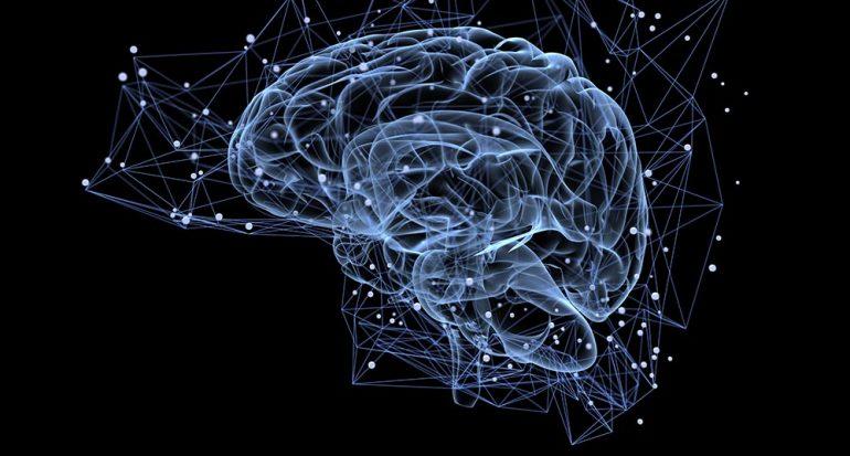 ¿A qué velocidad viajan las señales nerviosas?