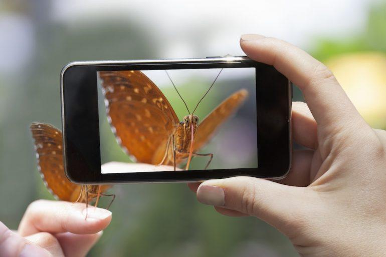 ¿Cómo capturar las mejores fotos?