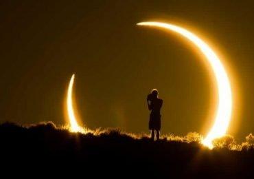 ¿Cómo reaccionan los animales a un eclipse solar?