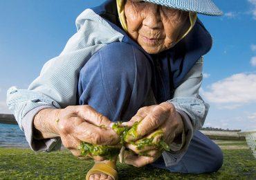¿Cómo tener una vida larga y saludable?