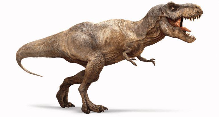 ¿Cuál es el descendiente vivo más cercano del Tyrannosaurus rex?