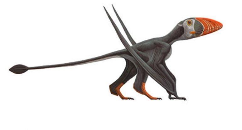 ¿Cuál es el reptil que podía caminar y volar?