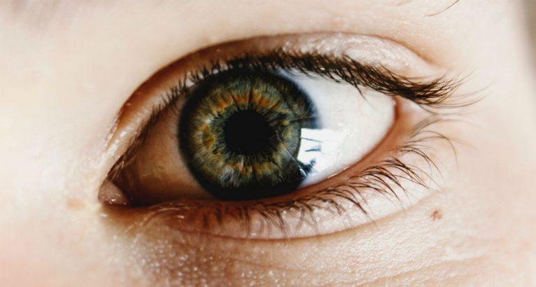 ¿Cuántas veces se puede mover un ojo?