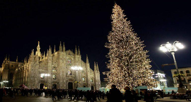 ¿Cuánto tarda en crecer un árbol de Navidad?