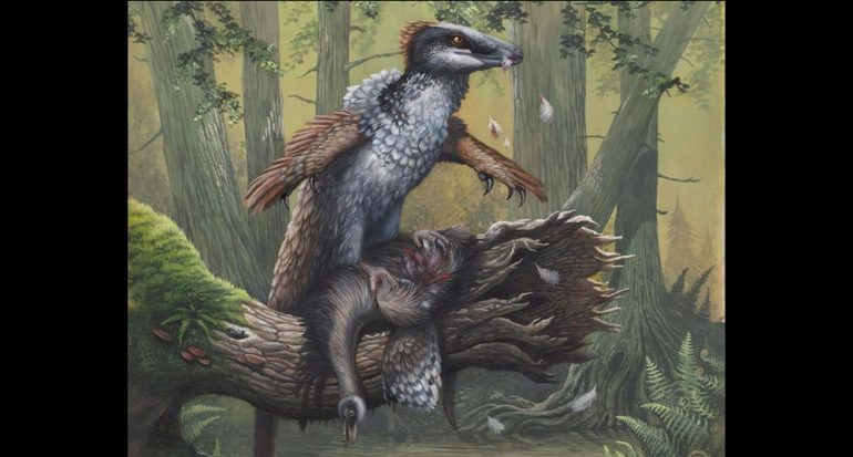 ¿Dakotaraptor de verdad enfrentó a Tyrannosaurus?
