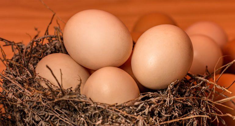 ¿En qué influye el tamaño de los huevos?