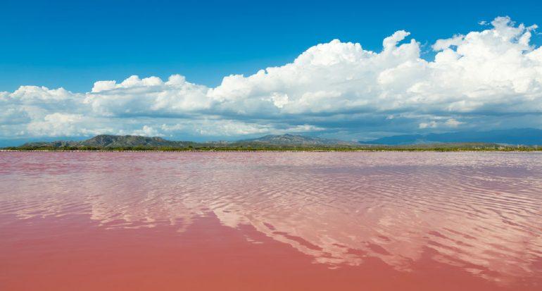 ¿Existe un lago rosa?