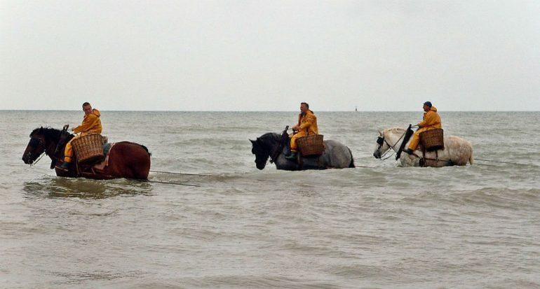 ¿Por qué están a caballo y con un cesto estos hombres?