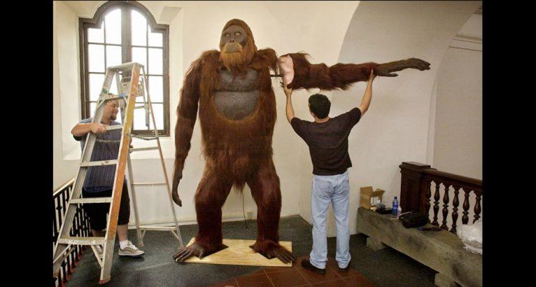 ¿Por qué se extinguió el simio más grande que haya existido?