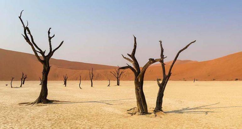 """¿Qué país es llamado """"El corazón muerto de África""""?"""