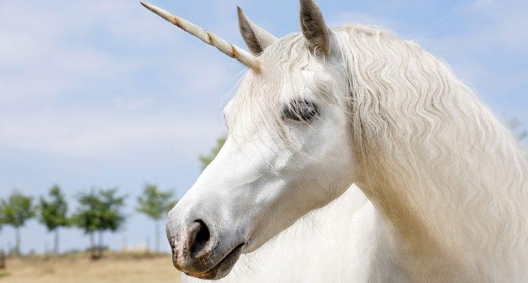 ¿Sabias qué en una región de un país el unicornio es su animal oficial?