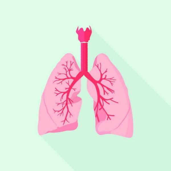 ¿Se puede saborear con los pulmones?