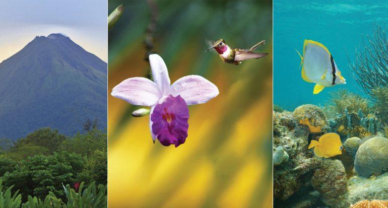 11 razones para visitar Costa Rica