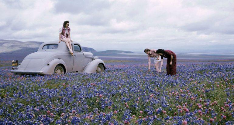 16 fotos que celebran la primavera