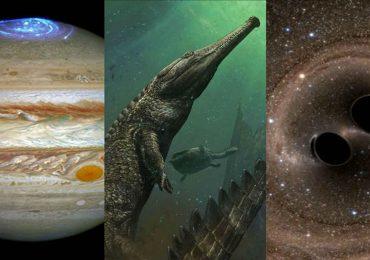 6 descubrimientos científicos que nos asombraron en 2016