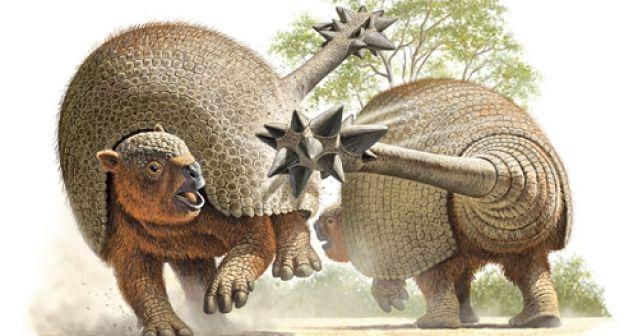 Armadillos prehistóricos cuidan articulaciones