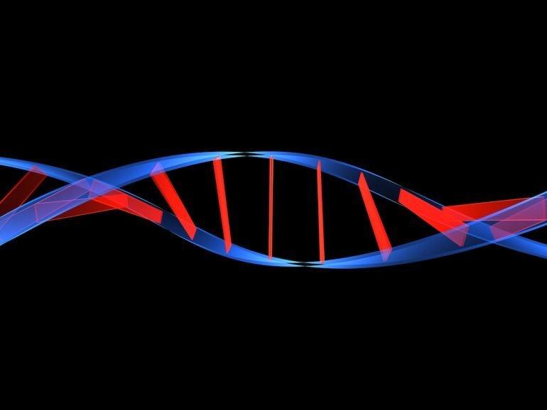 Asiáticos y americanos comparten código genético