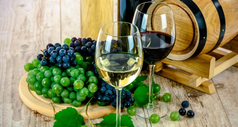 Asiste al festival del vino en Todos Santos