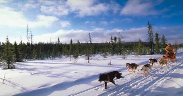 Aventura invernal