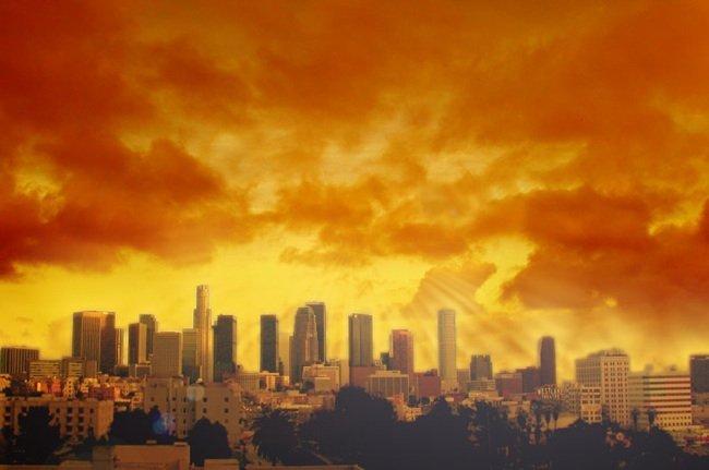 Búfalos en los Los Ángeles
