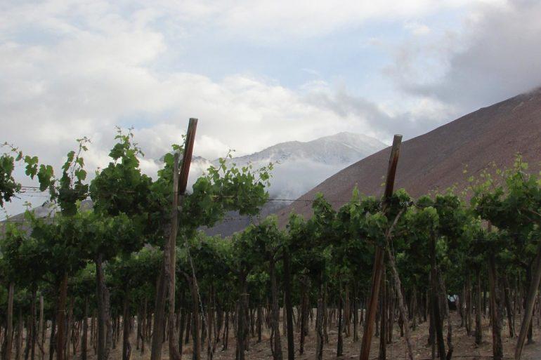 BLOG EN MOTO | Helada en el Valle del Elqui