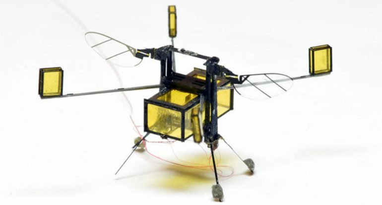 Bioingenieros crean robot diminuto que vuela
