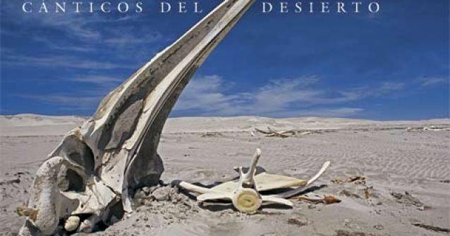 Cánticos del desierto