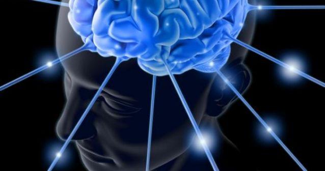 Cerebros Milenarios | La clave para las enfermedades mentales