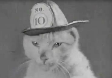 Conoce al increíble gato bombero de 1936