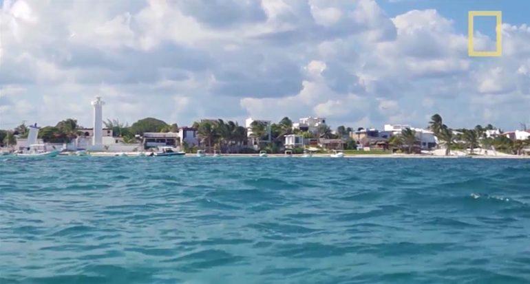 Conoce el parque nacional Arrecife de Puerto Morelos