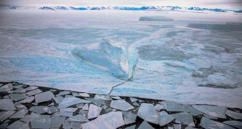 Crean la reserva marina más grande del mundo en la Antártida