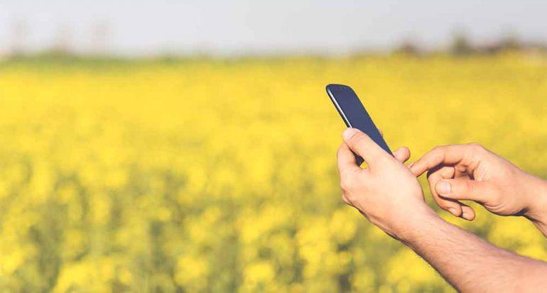 Cuida tu celular mientras viajas