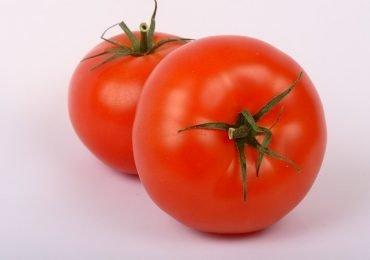 Dato del día: Tomates