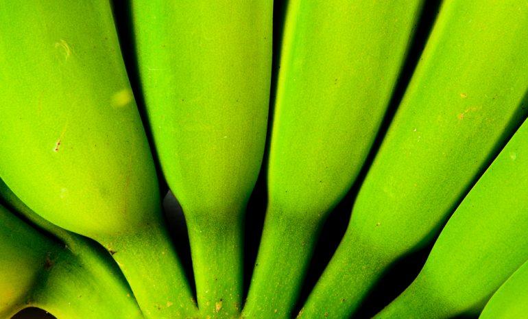 De fruta a plástico