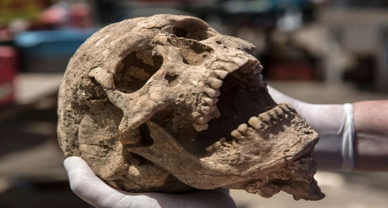 Descubren cementerio que podría esclarecer la historia de los filisteos