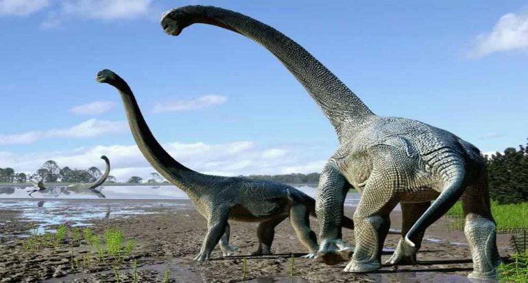 Dinosaurios cruzaron la Antártida para llegar a Australia