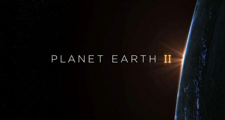 Disfruta de 40 horas inéditas del documental Planet Earth II