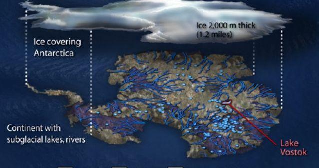 El Antártico contiene un oasis de vida
