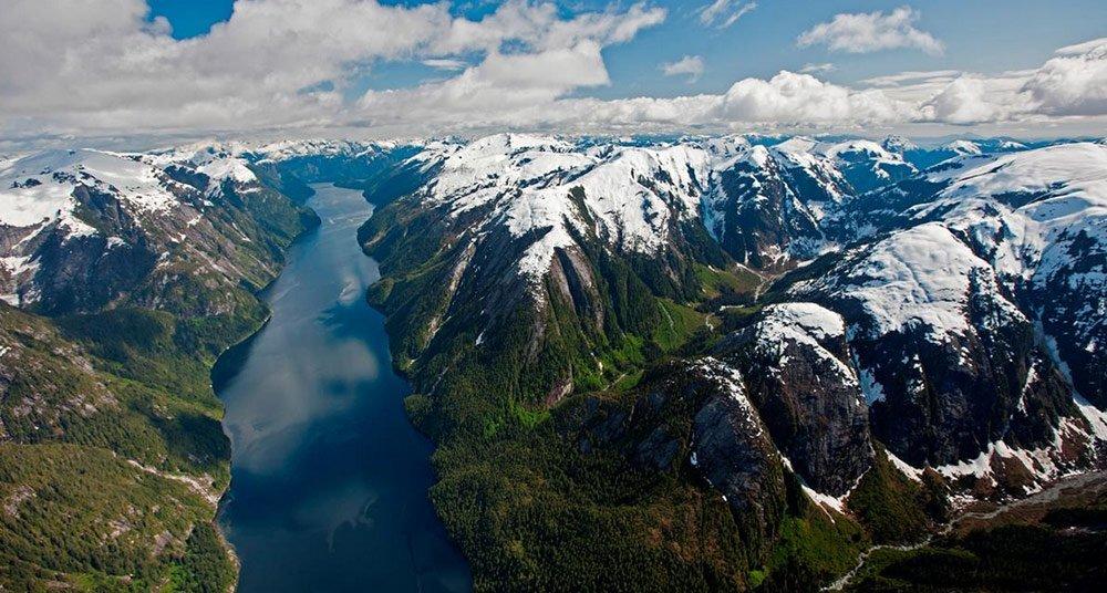 El Bosque del Gran Oso - National Geographic en Español