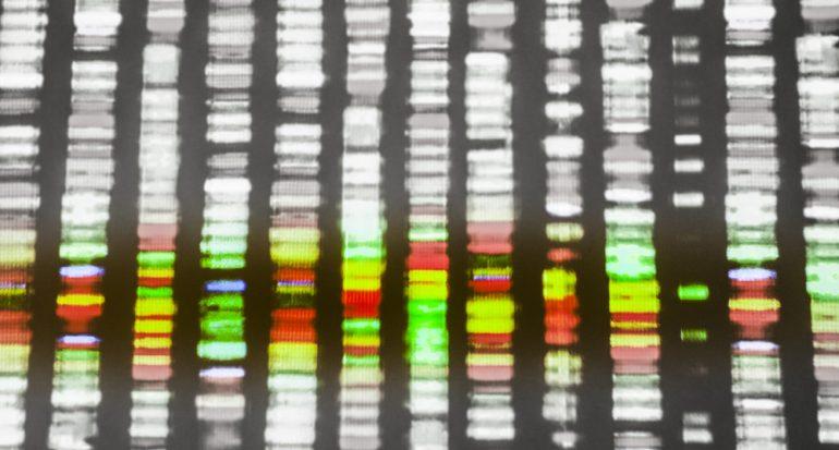 El cáncer y el genoma: sí es personal