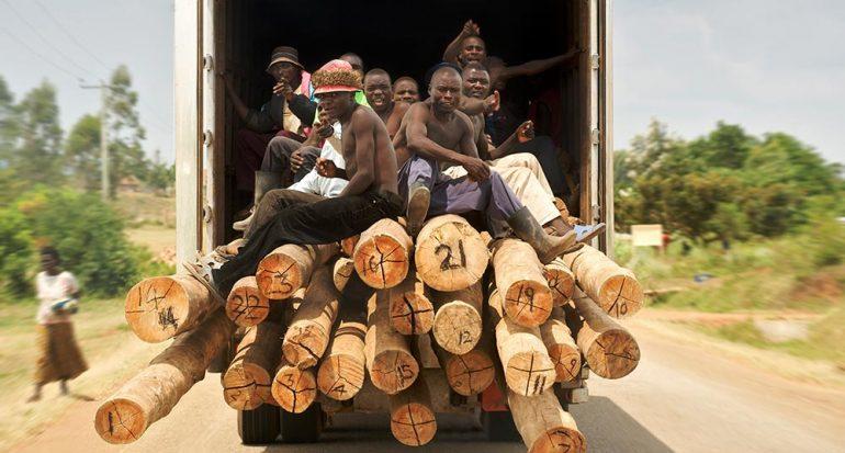 El crimen en la selva de Uganda