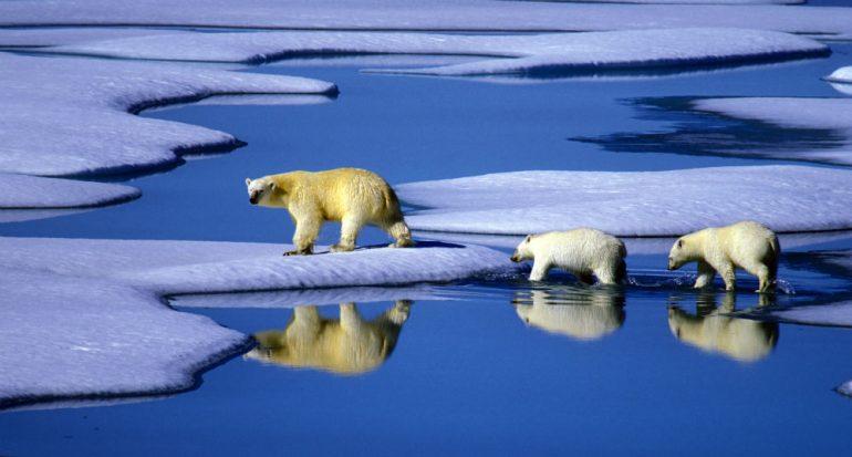 El objetivo: contener el cambio climático