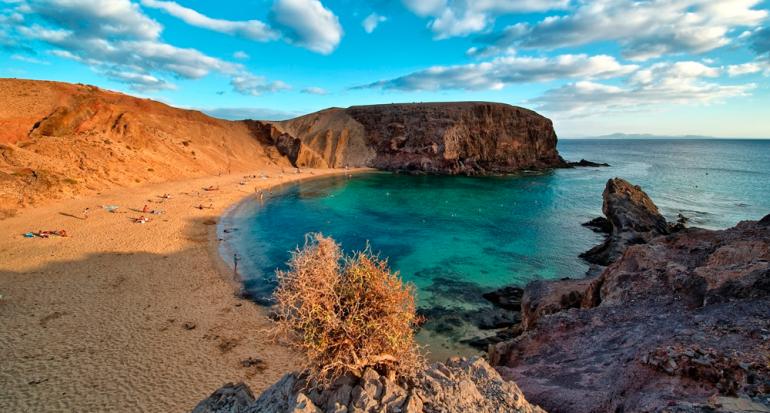 El origen del nombre de las Islas Canarias viene de?