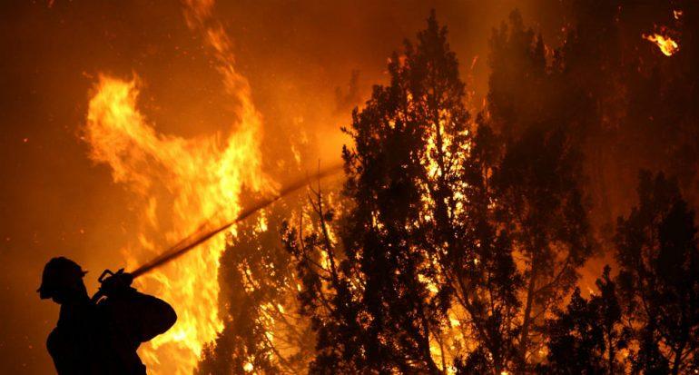 El peor desastre forestal de Chile