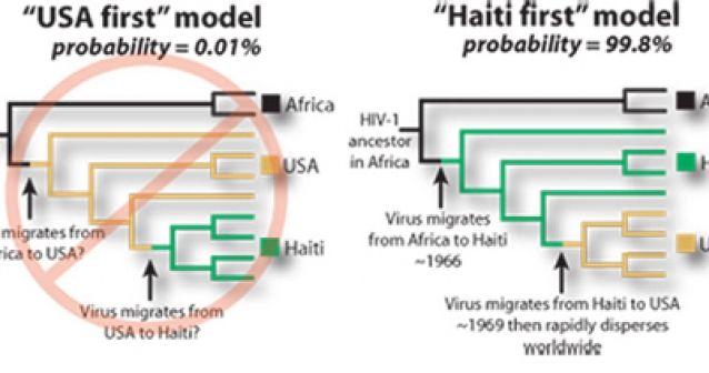 El virus del sida llegó primero a Haití y después a Estados Unidos