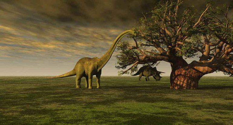Encuentran células de dinosaurio de hace 75 millones de años