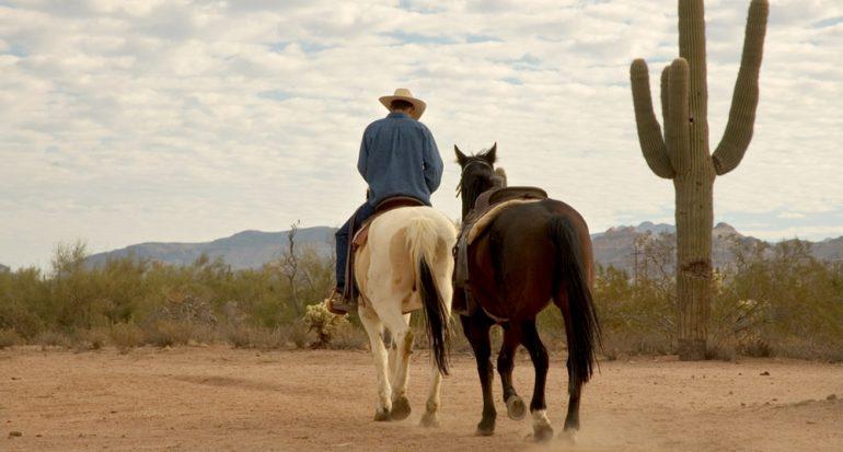 Espectáculo para los amantes de los caballos