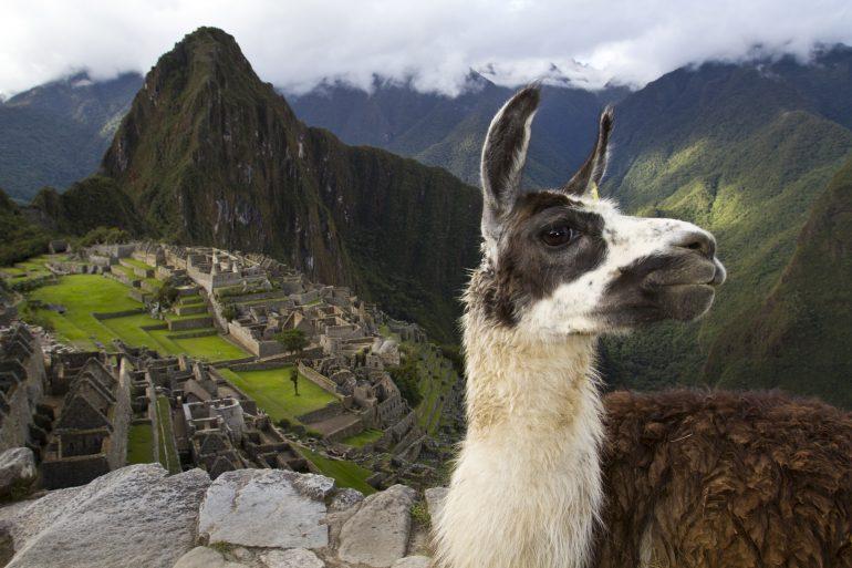 Fotogalería de una expedición a Macchu Picchu