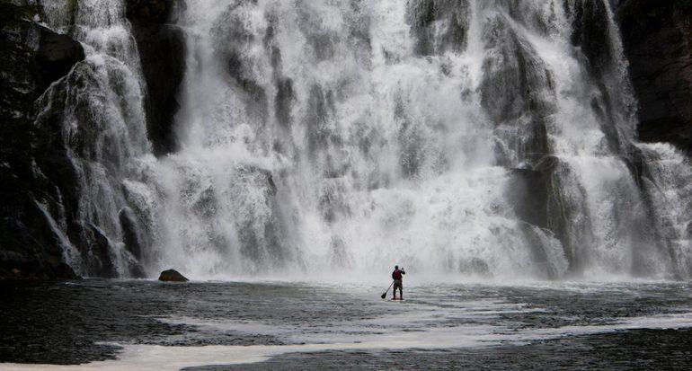 Fotos espectaculares del recién protegido Bosque del Gran Oso